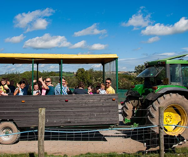 Tractor Rides 4